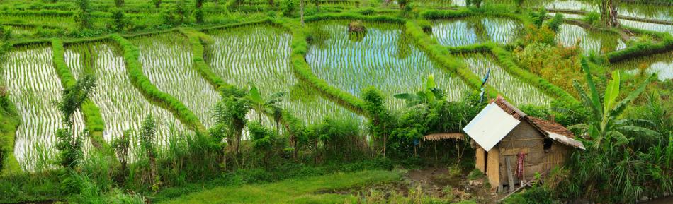 農業農地の法務税務